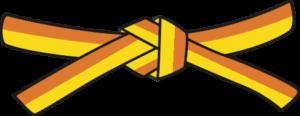Judo - Cinto Amarelo - Laranja